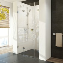 Brilliant BSD3 Shower Door