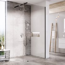 Walk-In Shower Enclosure, model Wall